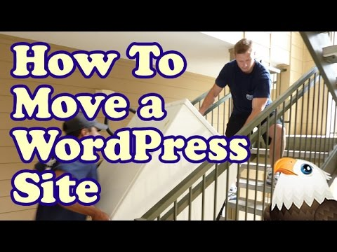 move wordpress site to a new Domain
