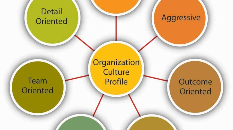 the role and importance of organization culture in a business or company Why company culture is so important each company is defined by it not many know it by name and many don't even know it exists it's your company culture your dna, if you will, of your organization a company's culture is the only truly unique identifier things like your products, your strategies and even your techniques can be.